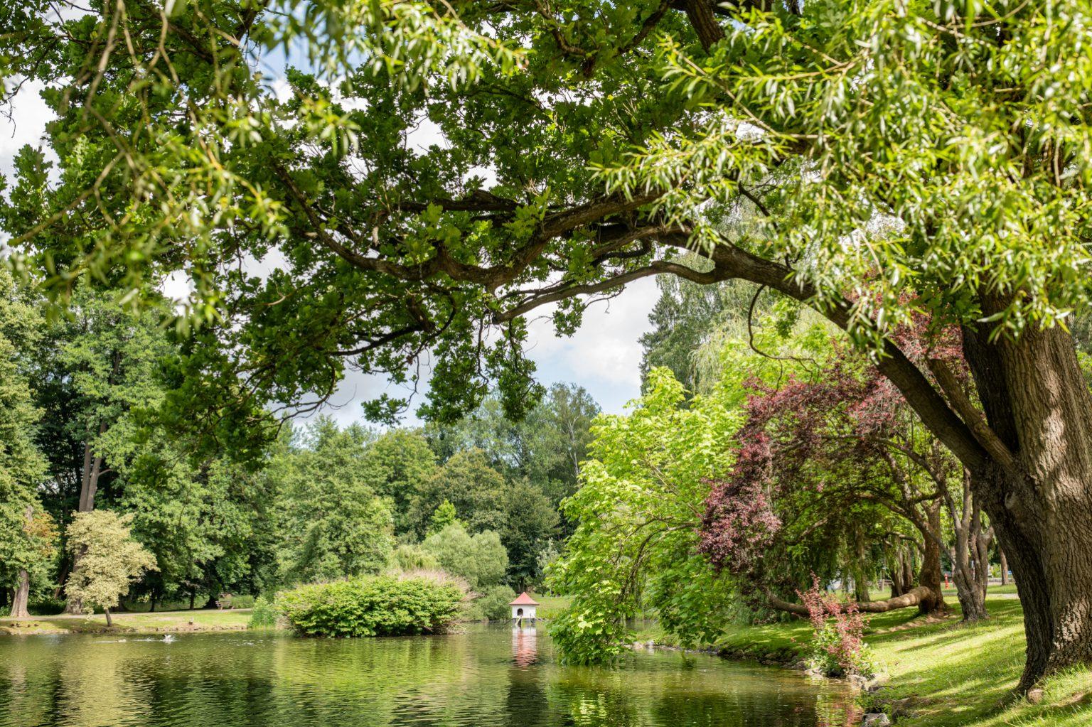 Elisabethpark   Bad Liebenstein   Rundfahrt